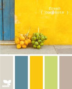 Colors?  We have the yellow pendants, and our dishes are yellow.  Curtains are green and the walls in the family room are already gray.  So blue walls in the kitchen and some new towels, etc?