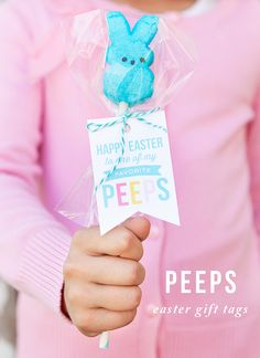 Quick and easy Peeps Pops with free printable gift tags. Cute Easter gift idea. Easy classroom gift idea.