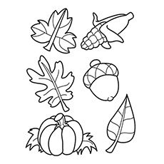 Fall Coloring Sheets Free herbstbltter zum ausmalen autumn leaves coloring page Fall Coloring Sheets Free. Here is Fall Coloring Sheets Free for you. Fall Coloring Sheets Free autumn harvest coloring page free printable coloring p. Fall Coloring Sheets, Fall Leaves Coloring Pages, Leaf Coloring Page, Thanksgiving Coloring Pages, Colouring Pages, Free Coloring, Coloring Pages For Kids, Coloring Books, Animal Coloring Pages