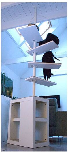 Make a sturdy cat tree for your home! Find or build a wood table with a center shelf and cover the shelves with carpeting. Drill a hole through the table and shelf, and insert an Ikea Stolmen post int