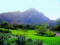 Travel Plans for 2011: South Africa - Part Two | Travel to Sun