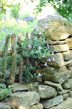 rustic fence and stone