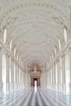 THE PALACE OF VENARIA, TURIN ITALY | .