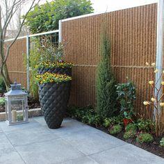 Fence, Planters, Backyard, House Design, Decks, Outdoor, Home, Tips, Gardens