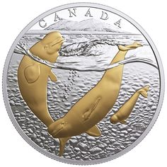 2018 $20 ARCTIC BELUGA WHALE SILVER COIN (TAX EXEMPT)