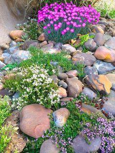 36 stunning front yard rock garden landscaping ideas 38 amazing rock garden ideas try for all season Landscaping Supplies, Front Yard Landscaping, Backyard Landscaping, Landscaping Ideas, Gardening Supplies, Landscape Plans, Landscape Design, Landscape Steps, Amazing Gardens
