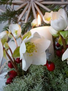 noces d hiver noel mariage 3 favoris juillet nol noel nol douce nol temps de nol le style nordique kersttijd christmastime