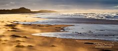 PEI, Prince Edward Island, Canada Pei Canada, Pictures Of Prince, Atlantic Canada, Prince Edward Island, New Brunswick, Sea And Ocean, Beautiful Islands, Landscape Photographers, Foxes