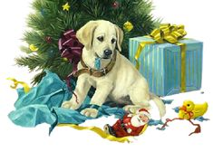 Karácsonyi képek Christmas And New Year, Winter Christmas, Christmas Time, Christmas Colors, Xmas, All Hd Wallpaper, Puppy Gifts, Winter Images, Free Dogs