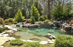 Natural pond design swimming pool with water features Natural Swimming Ponds, Natural Pond, Swimming Pools, Natural Garden, Pond Design, Modern Garden Design, Design Fonte, Beautiful Pools, Gorgeous Gorgeous