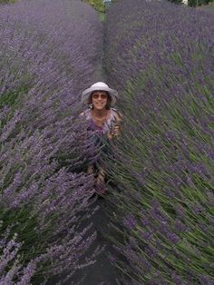 I'm taking an aromatic 'break' between some pretty large lavender on our Upick Lavender Farm. Ahh..extremely soothing and calming!  #lavenderfarm #organic #upick #hoodriverlavender #hoodriver #oregon #lavandin #hidcotegiant #aromatherapy #calming #flowers