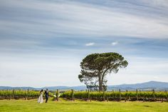 Gorgeous bridal photos at our most favourite wedding venue, Stones of the Yarra Valley. Photo by Twenty One Studio