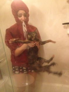 Perhaps giving the cat a bath wasn't such a good idea....