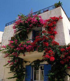 Flower balcony