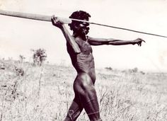 the woomera is distinctively Australian and is actually a lever to increase the speed at which a spear travels and the distance achieved Made of wood Spinifex resin with. Aboriginal Man, Aboriginal Culture, Aboriginal People, Australian Aboriginal History, Spear Thrower, Australian Aboriginals, Indigenous Tribes, Indigenous Education, Hunter Gatherer