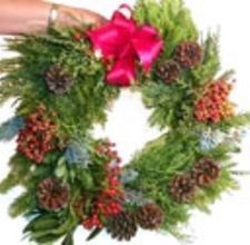Tutorial on how to make an evergreen wreath.  Just use a wire hangar and scraps of evergreen from your local Christmas tree lot.  Really easy!