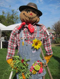 One handsome scarecrow at the Vashon Farmers Market …