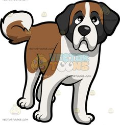 A Curious Young St Bernard Dog :  A dog with brown and white fur droopy gray ears looks ahead in a curious way  The post A Curious Young St Bernard Dog appeared first on VectorToons.com.