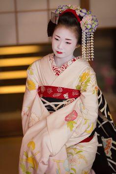 September 2015: first-year maiko Ichiyui of Pontocho by @ta_ta999 - blog