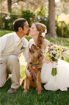 Dogs in weddings  Wedding portrait with a dog  bride groom dog  dog ring bearer   dog flower girl  dog walk down aisle in ceremony  bride groom dog