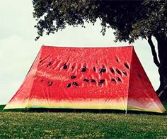Make your campsite stand out from the rest with this tantalizing watermelon tent. Though it may attract wild grizzly bears to your camping area like flies to a...