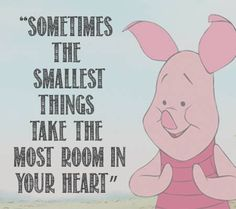 Sometimes the smallest things take the most room in your heart