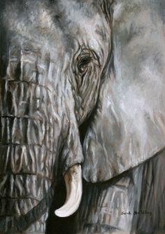 African elephant oil on canvas.