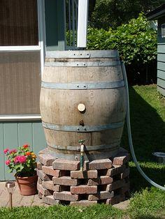 Rain barrel on brick riser