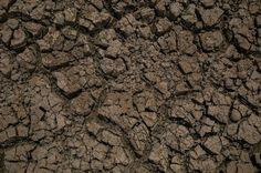 CARLOS  -  Professor  de  Geografia: Desertificação: 'por que este assunto não está na ...