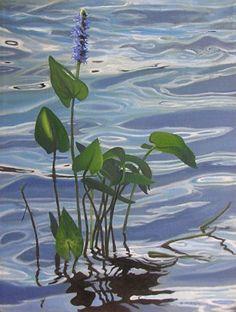 """Pickerel Weed"" by Sandra  Hildreth."