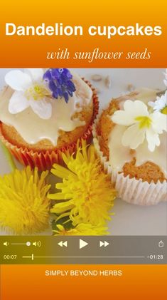 seeds are simple to make, these dandelion cupcakes decorated with a swirl of delicious lemon frosting make for a beautiful decoration on your dining table. Herb Recipes, Whole Food Recipes, Healthy Recipes, Strudel, Lemon Frosting, Dandelion Recipes, Cupcakes, Recipe From Scratch, Recipe Boards