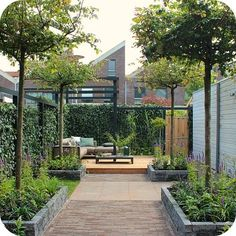 Modern garden design tips Terrace Garden, Garden Spaces, Contemporary Landscape, Landscape Design, Small Gardens, Outdoor Gardens, Outdoor Sheds, Small Garden Design, Outside Living