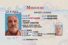 How to Get a Driver's License in Missouri - DMV Connect