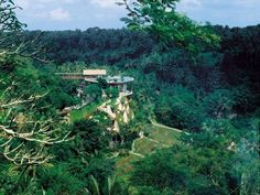 Hidden in a lush paradise beside the Ayung River, the Four Seasons Resort Bali at Sayan