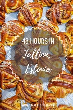 Comprehensive Guide to Seeing the Best of  Tallinn, Estonia in 48 Hours. The Perfect 2 Day Itinerary for Tallinn, Estonia. Places In Europe, Europe Destinations, Best Places To Travel, Amazing Destinations, European Travel Tips, Travel Europe, Estonia Travel, Backpacking Tips, City Guides