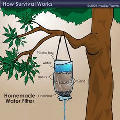 If your in a pinch here's a great way to #filter some #water. Live Life Ready™…