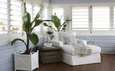Sunroom with Plantation Shutters, Cottage, Living Room - Silvia-daum - Sunroom w. - Sunroom with Plantation Shutters, Cottage, Living Room – Silvia-daum – Sunroom with Plantation - Cottage Living Rooms, Coastal Living Rooms, Living Room Decor, Living Spaces, Cottage Rugs, Style At Home, Salons Cottage, Style Cottage, French Cottage