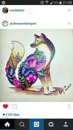 Jardimsecretofans Coloring BooksColouringJohanna BasfordZentangleEnchantedFoxMagical