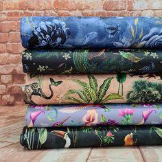 Flamingo Fabrics Ltd The home of fun Flamingo Fabric, Dinosaur Fabric, Dinosaur Design, Custom Printed Fabric, Fabulous Fabrics, New Print, Waterproof Fabric, Fabric Online, Kids Outfits