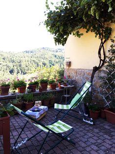 Una pergola di uva sulla terrazza... per l'uva ma anche per l'ombra!  // Grapes on the terrace: an idea for shadow and growing grapes on a balcony