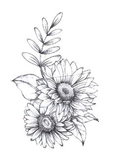 84 Best Sunflower drawing images in 2019 | How to paint ...