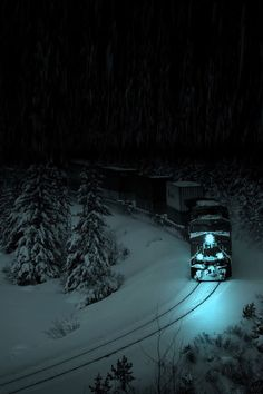 Winter night train