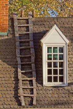 rooftop ladder