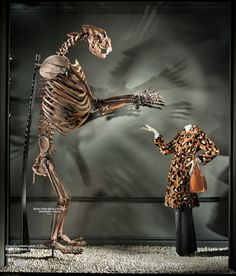 Bergdorf Goodman display windows during August 7 - September 1, 2015 | display design and arrangement by David Hoey | the bones and skeletons are by Bone Clones® and they are replicas, no real or natural bone material is produced by the company