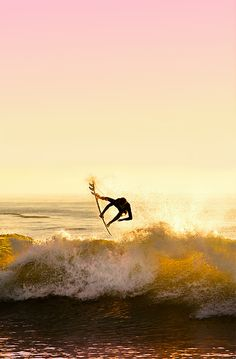 a02008d3a85 79 Best Surf images in 2019