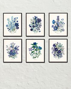 Fleurs De Jardin Blue Series - Botanical Print Set - Printed on archival canvas - Makes a charming vintage display - Multiple Sizes - Free US Shipping – Belle Maison Art