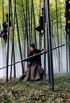 Zhang Ziyi in House of Flying Daggers - cool scene fighting in a bamboo forest House Of Flying Daggers, Zhang Ziyi, Chinese Martial Arts, Memoirs Of A Geisha, My Fantasy World, About Time Movie, Christen, Color Of Life, Asian Actors