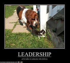 Funny Leadership Quote - leadership quotes
