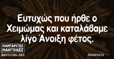 201511131357427407 Funny Memes, Jokes, Greek Quotes, True Words, Funny Pictures, Humor, Common Sense, Funny Photos, Humour