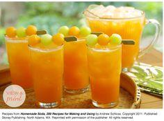 RECIPE: Cantaloupe Clementine Soda - follow link